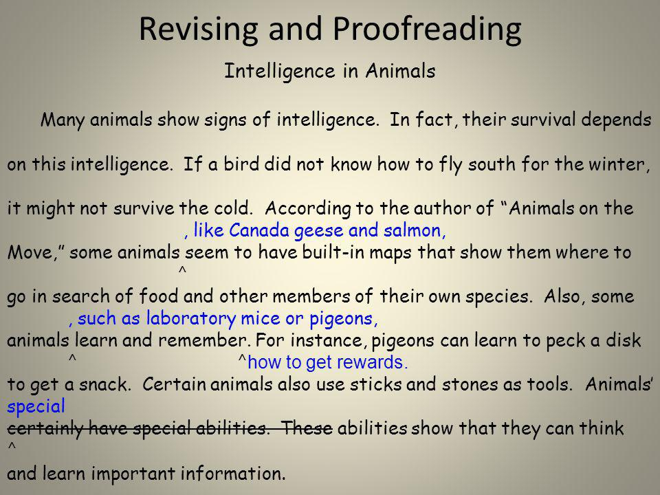 Revising and Proofreading Intelligence in Animals Many animals show signs of intelligence. In fact, their survival depends on this intelligence. If a
