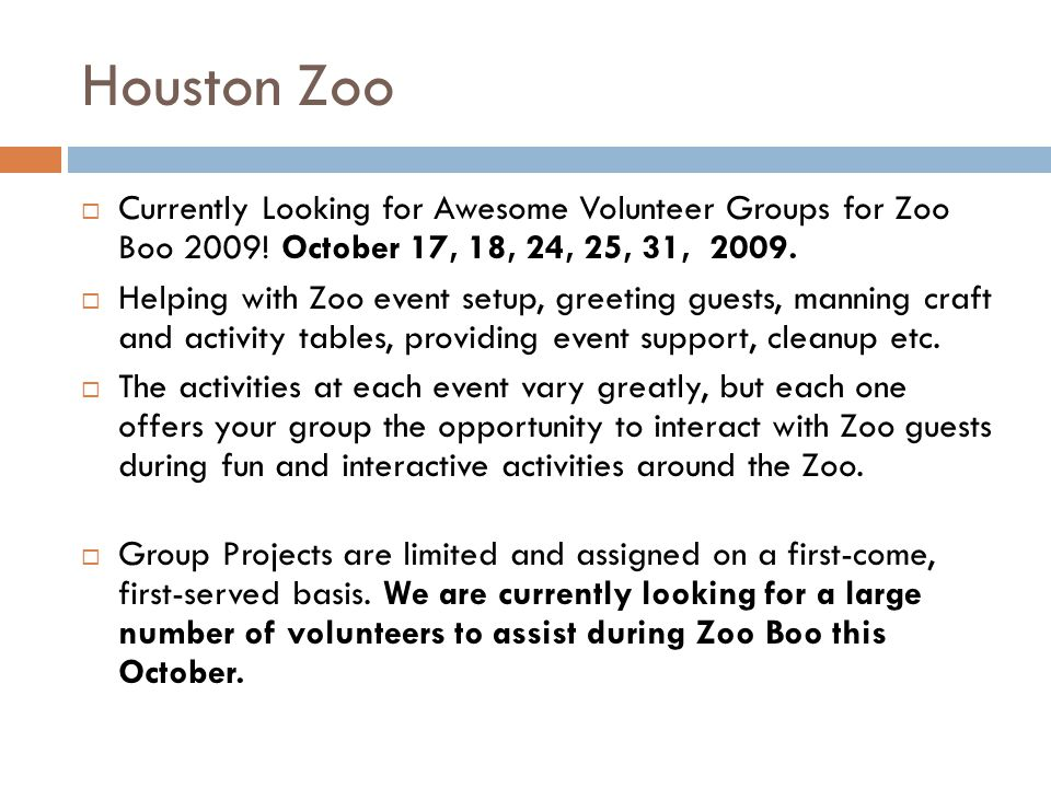 Houston Zoo Currently Looking for Awesome Volunteer Groups for Zoo Boo 2009.