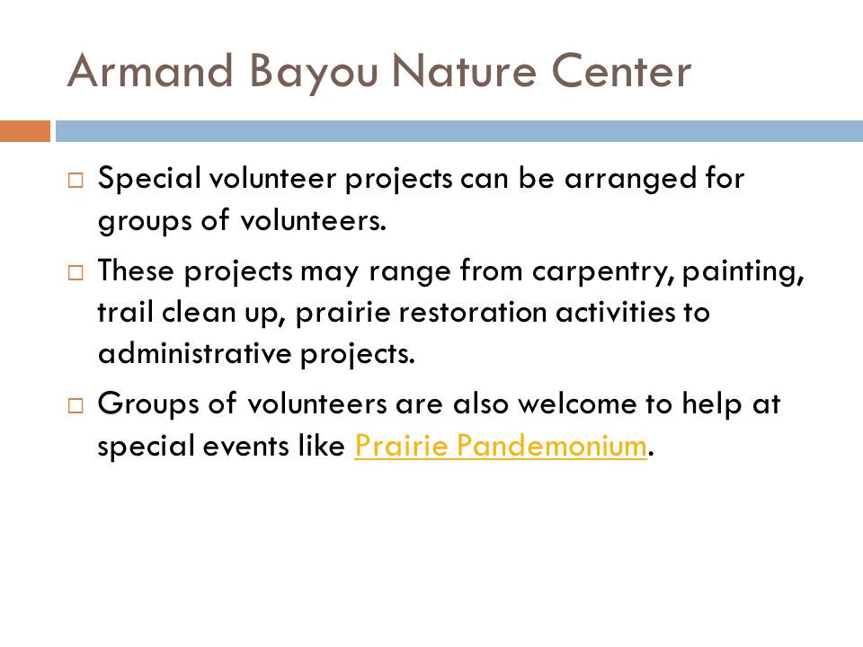 Armand Bayou Nature Center Special volunteer projects can be arranged for groups of volunteers.