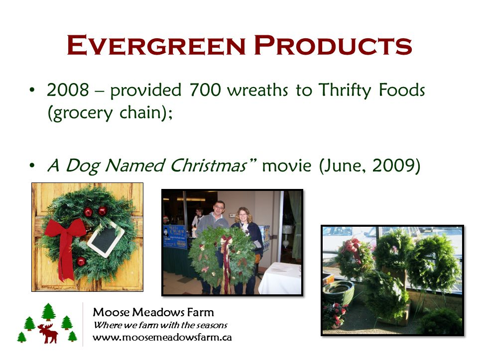 2008 – provided 700 wreaths to Thrifty Foods (grocery chain); A Dog Named Christmas movie (June, 2009) Evergreen Products Moose Meadows Farm Where we