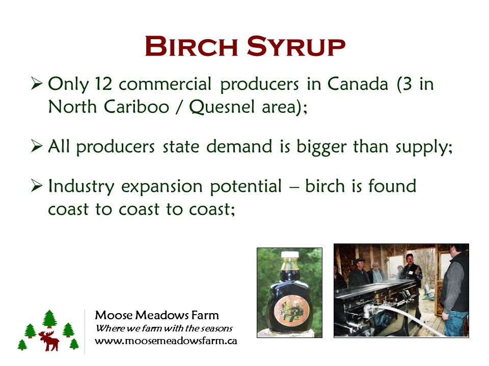 Birch Syrup Only 12 commercial producers in Canada (3 in North Cariboo / Quesnel area); All producers state demand is bigger than supply; Industry exp