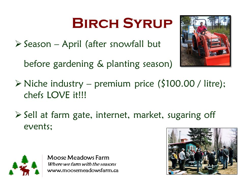 Birch Syrup Season – April (after snowfall but before gardening & planting season) Niche industry – premium price ($100.00 / litre); chefs LOVE it!!!