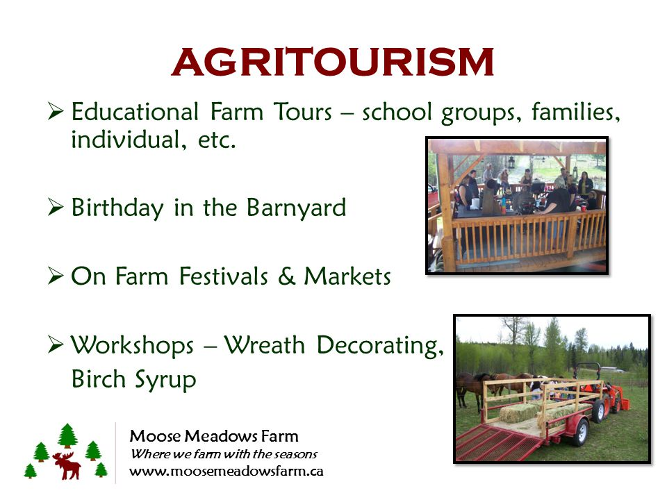 AGRITOURISM Educational Farm Tours – school groups, families, individual, etc. Birthday in the Barnyard On Farm Festivals & Markets Workshops – Wreath