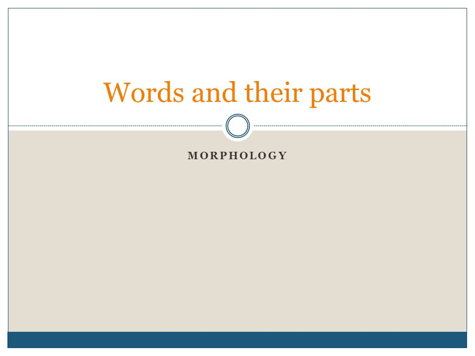 MORPHOLOGY Words and their parts