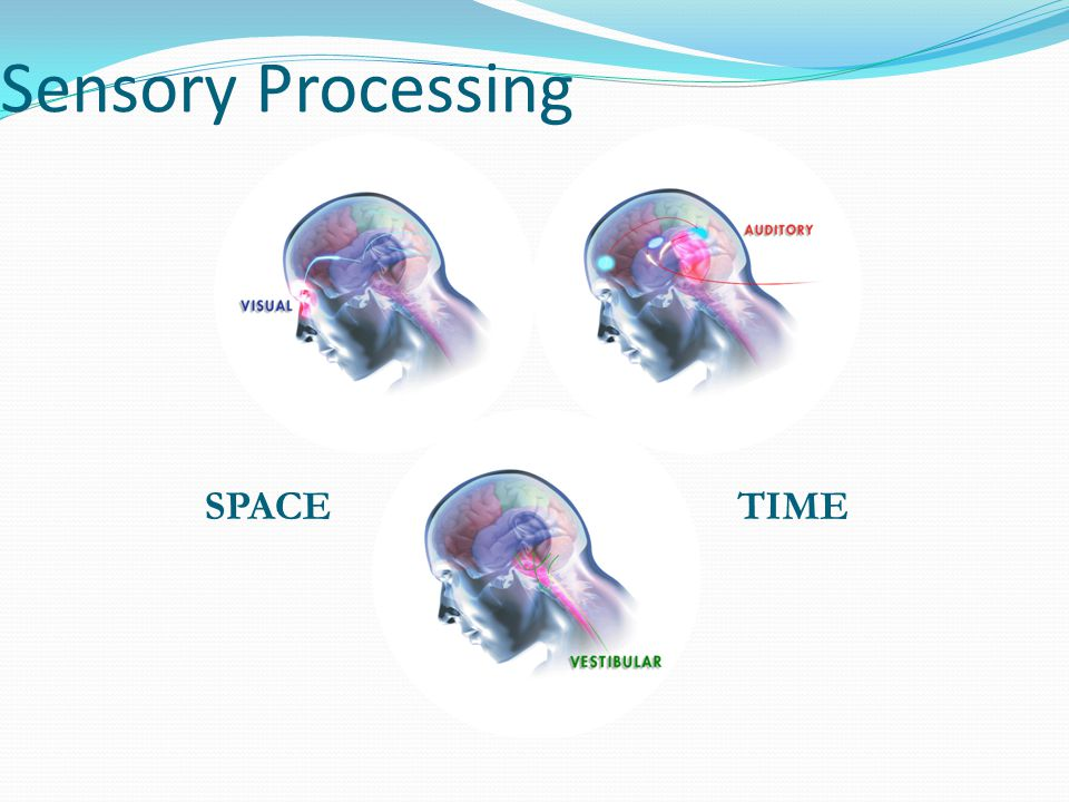 Sensory Processing SPACETIME