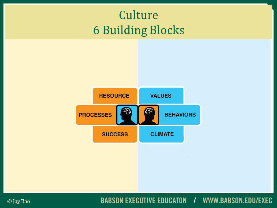Culture 6 Building Blocks 4 © Jay Rao