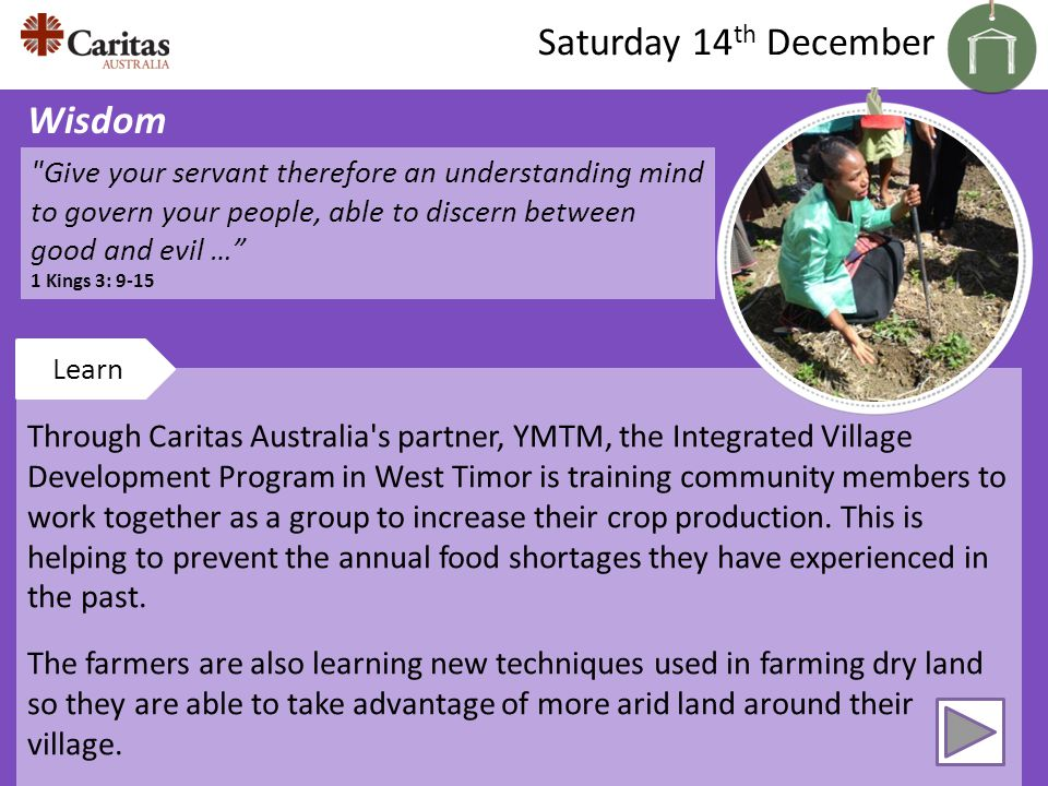 Through Caritas Australia s partner, YMTM, the Integrated Village Development Program in West Timor is training community members to work together as a group to increase their crop production.