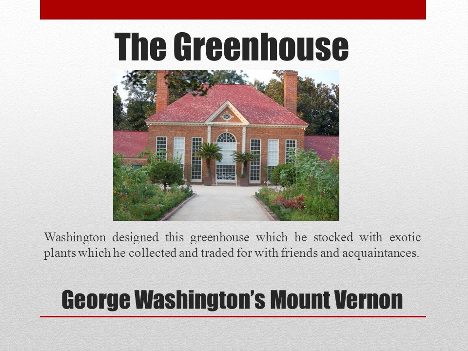 The Greenhouse Washington designed this greenhouse which he stocked with exotic plants which he collected and traded for with friends and acquaintance
