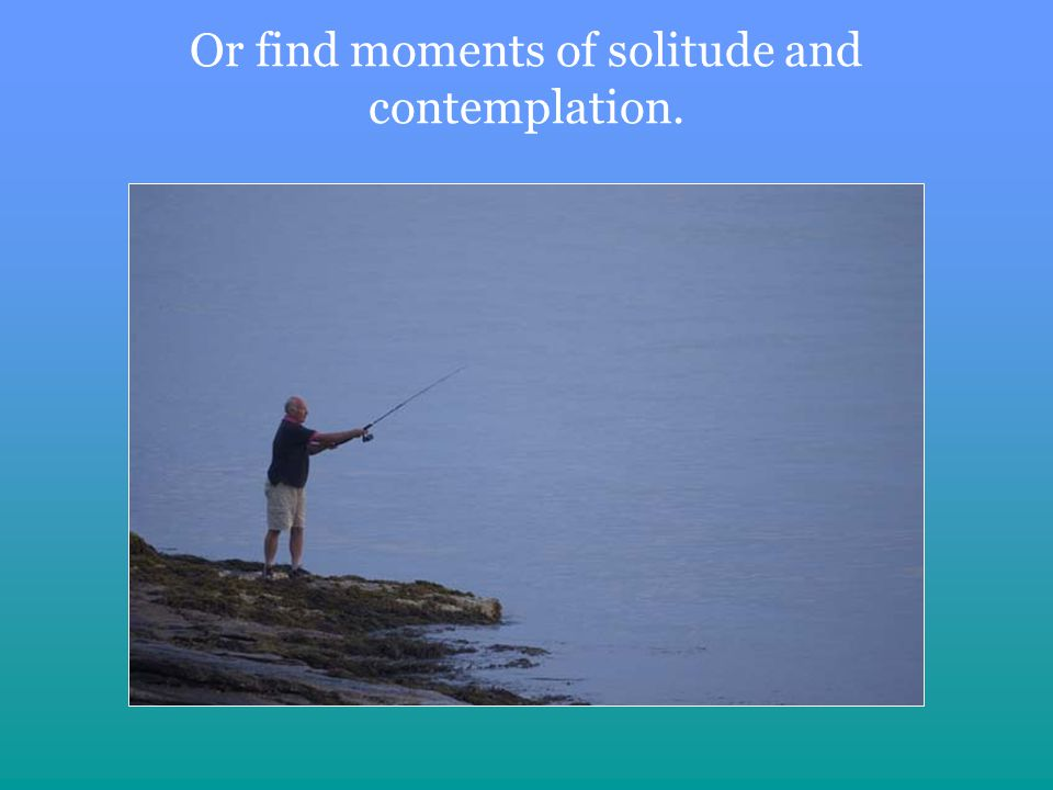 Or find moments of solitude and contemplation.