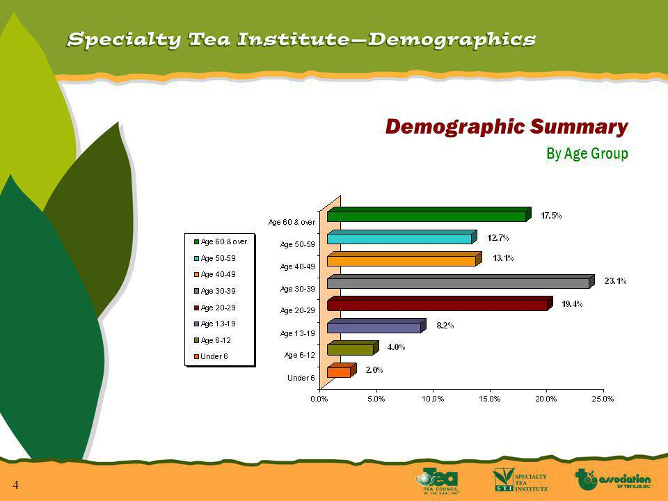 4 Demographic Summary By Age Group