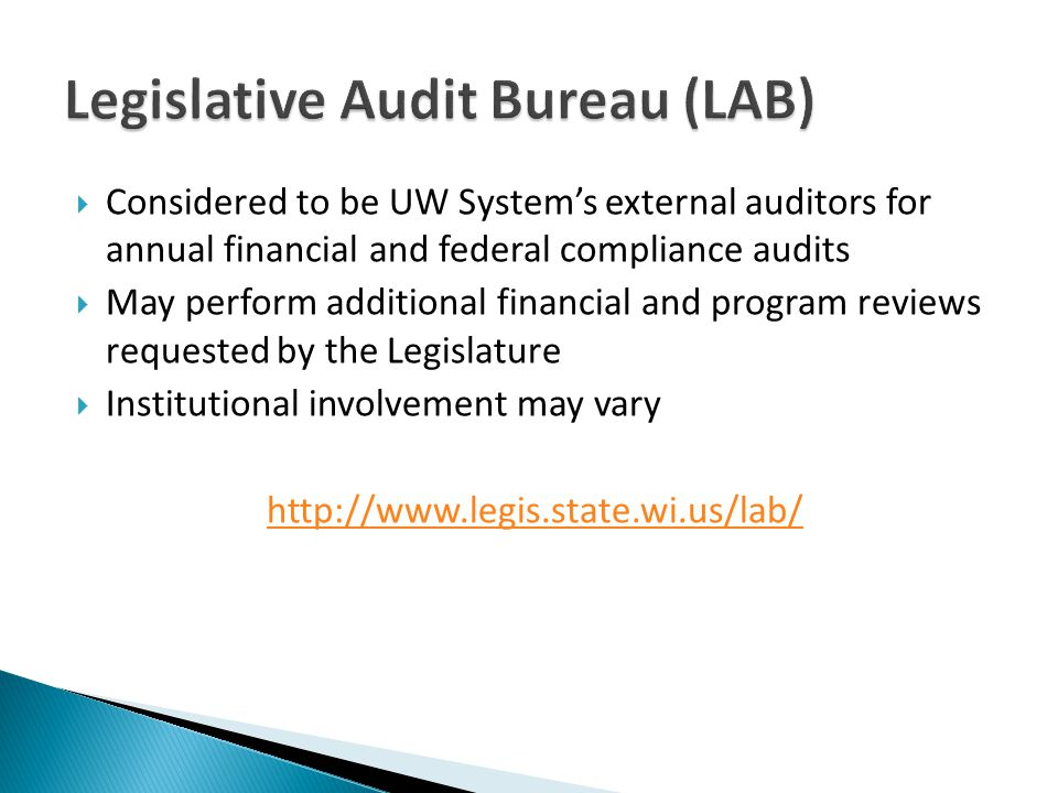 Considered to be UW Systems external auditors for annual financial and federal compliance audits May perform additional financial and program reviews