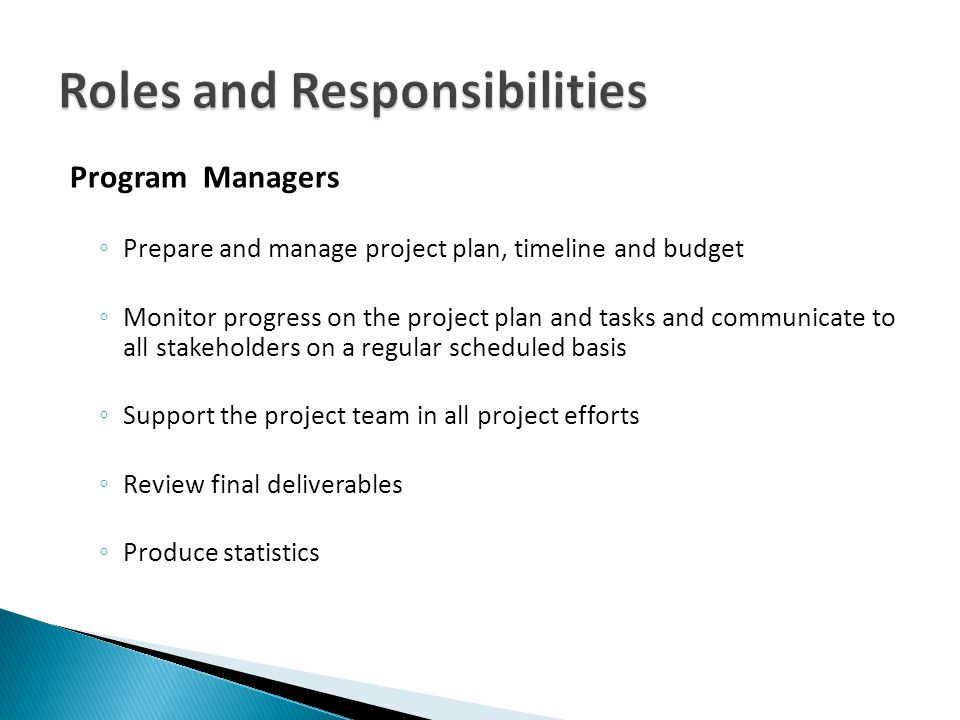 Program Managers Prepare and manage project plan, timeline and budget Monitor progress on the project plan and tasks and communicate to all stakeholders on a regular scheduled basis Support the project team in all project efforts Review final deliverables Produce statistics