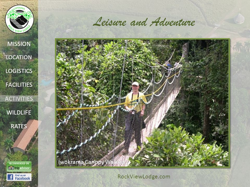 LOCATION FACILITIES ACTIVITIES LOGISTICS WILDLIFE RATES MISSION RockViewLodge.com Leisure and Adventure Iwokrama Canopy Walkway