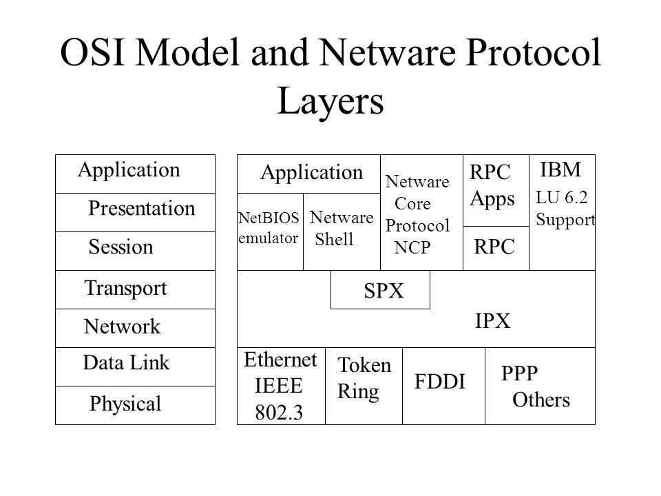OSI Model and Netware Protocol Layers Physical Data Link Network Transport Session Presentation Application Ethernet IEEE 802.3 Token Ring FDDI PPP Others IPX SPX Application NetBIOS emulator Netware Shell Netware Core Protocol NCP RPC Apps LU 6.2 Support IBM