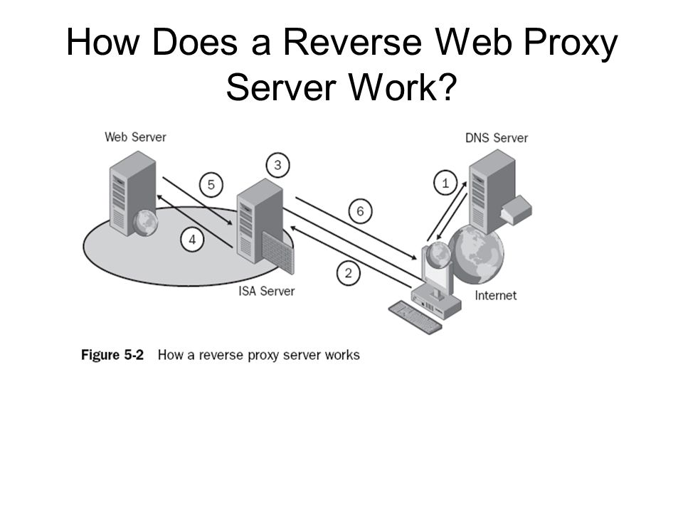 How Does a Reverse Web Proxy Server Work?