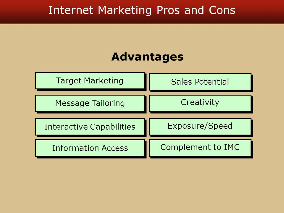Internet Marketing Pros and Cons Target Marketing Message Tailoring Interactive Capabilities Information Access Sales Potential Creativity Exposure/Sp