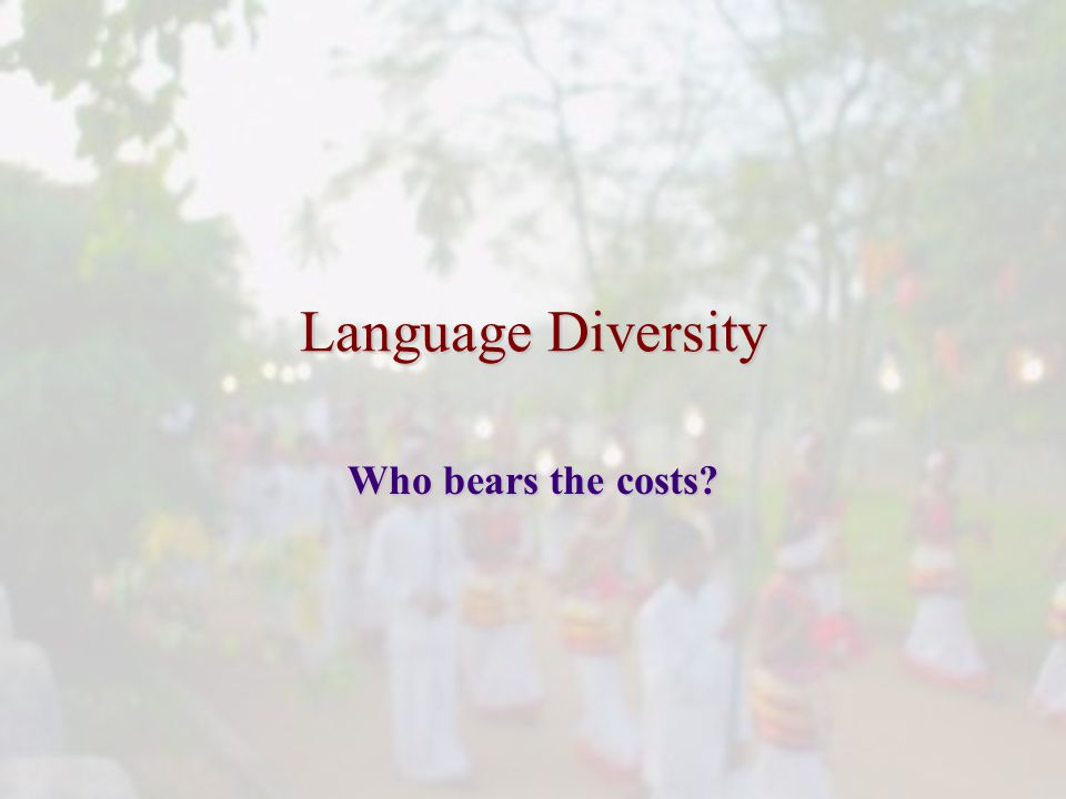 Language Diversity Who bears the costs