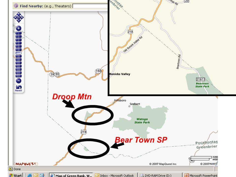 Bear Town SP