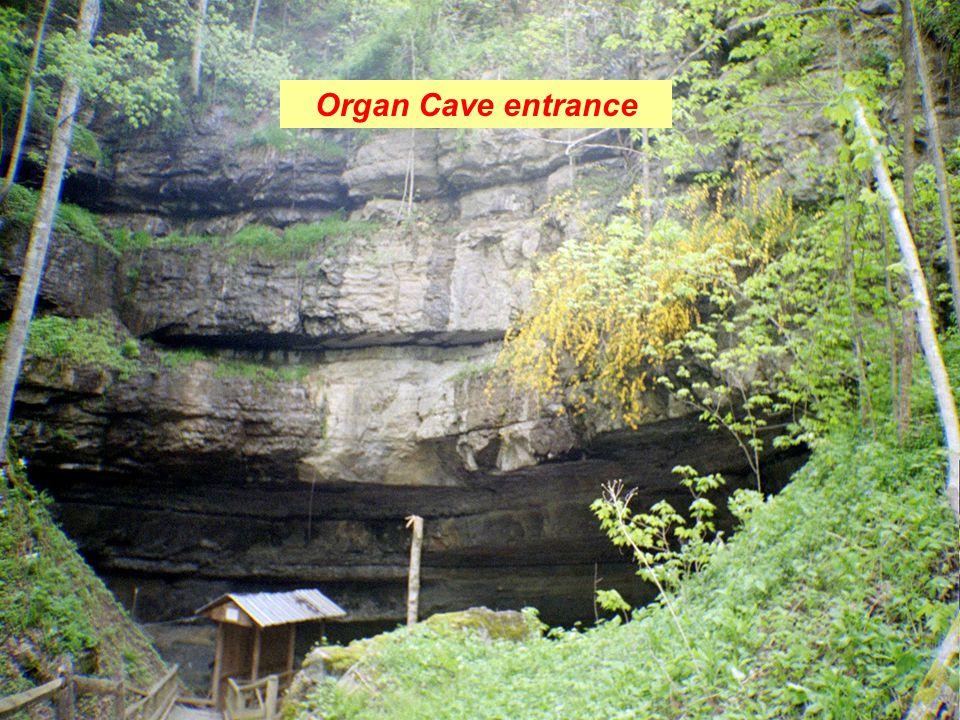 Organ Cave entrance