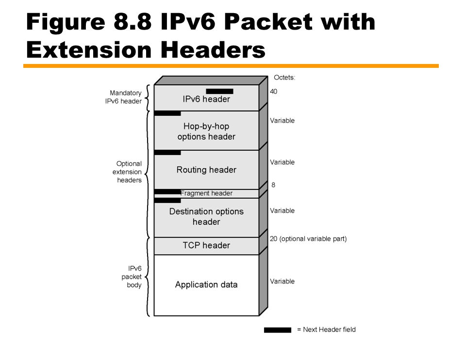 Figure 8.8 IPv6 Packet with Extension Headers