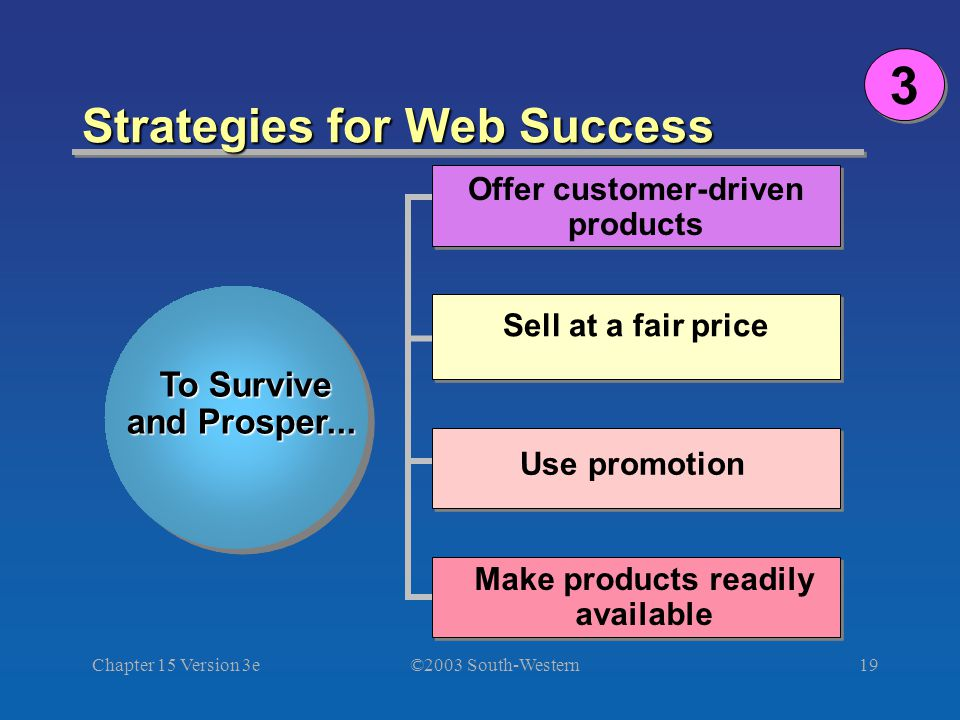 ©2003 South-Western Chapter 15 Version 3e19 Strategies for Web Success To Survive and Prosper...