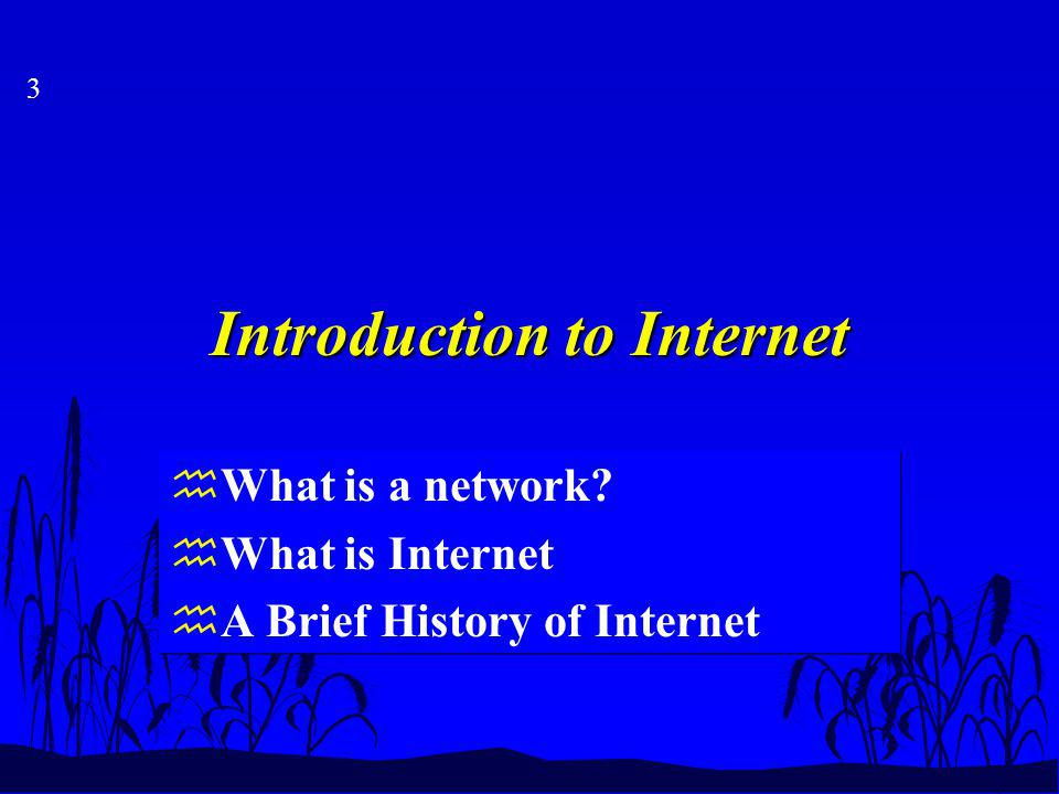 3 Introduction to Internet hWhat is a network.