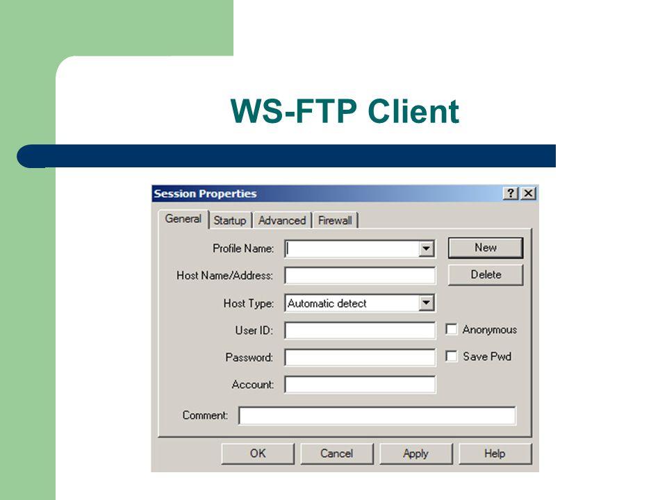 WS-FTP Client