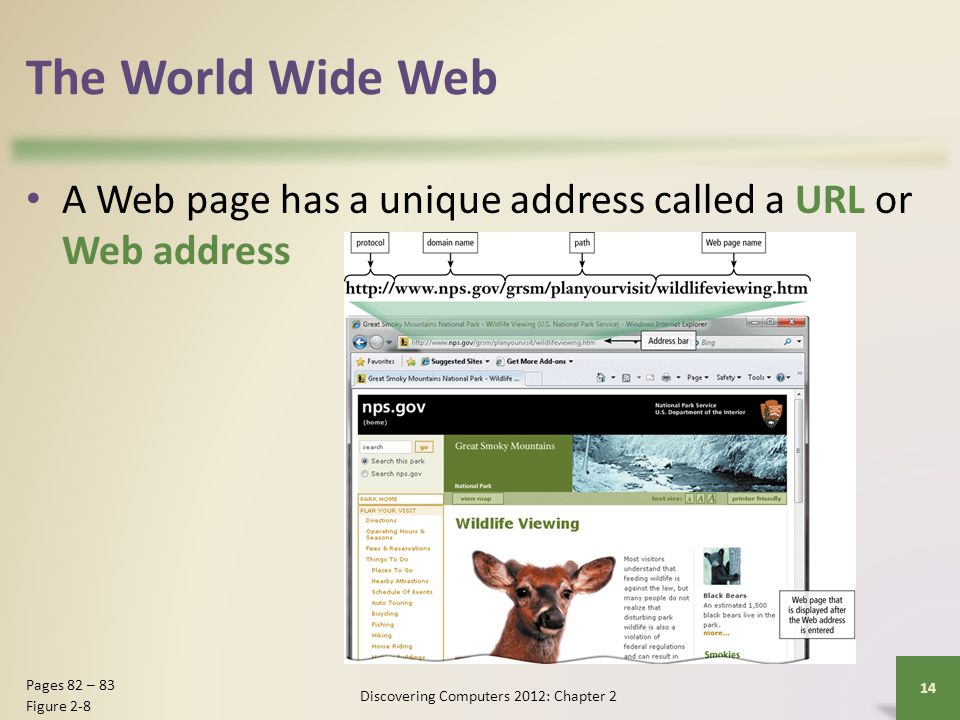 The World Wide Web A Web page has a unique address called a URL or Web address Discovering Computers 2012: Chapter 2 14 Pages 82 – 83 Figure 2-8