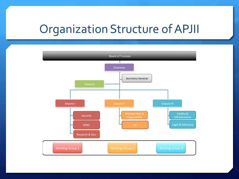 Organization Structure of APJII
