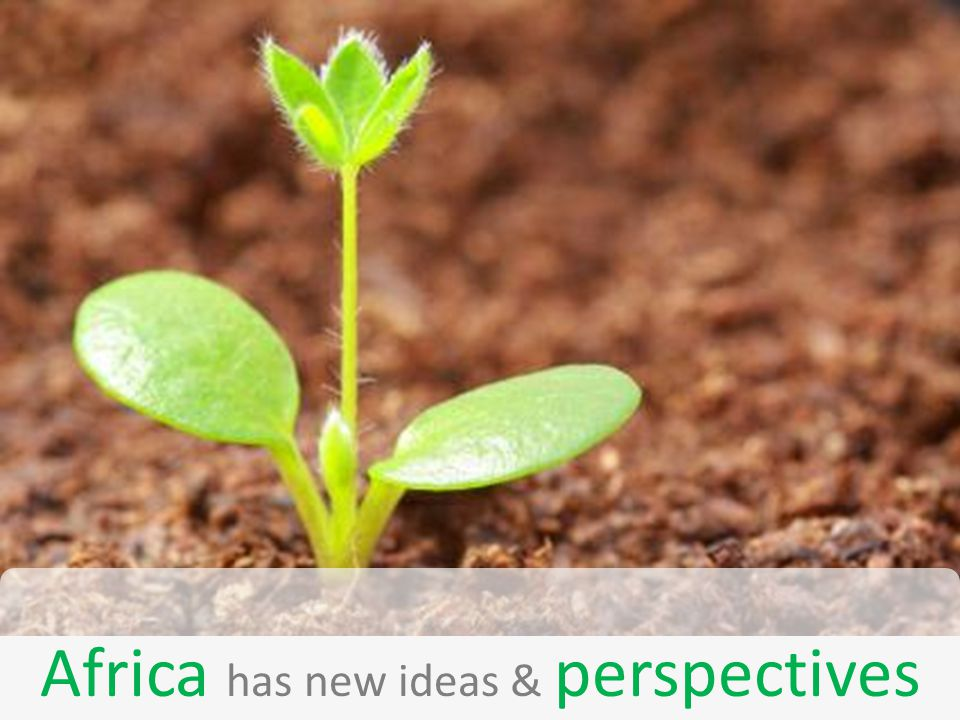 Africa has new ideas & perspectives
