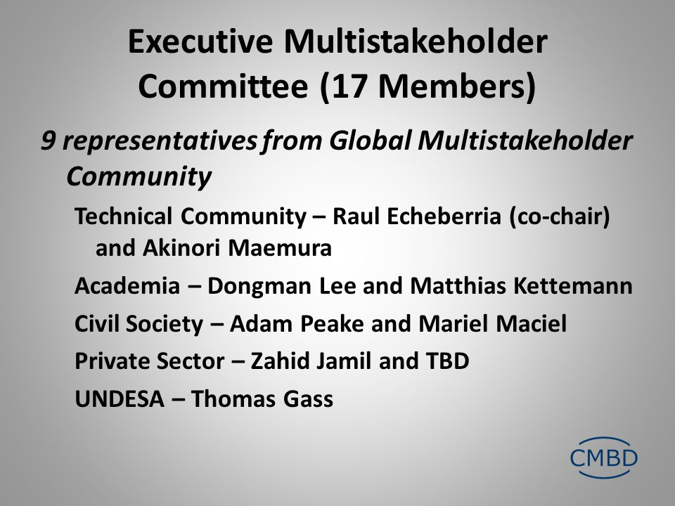 Executive Multistakeholder Committee (17 Members) 9 representatives from Global Multistakeholder Community Technical Community – Raul Echeberria (co-chair) and Akinori Maemura Academia – Dongman Lee and Matthias Kettemann Civil Society – Adam Peake and Mariel Maciel Private Sector – Zahid Jamil and TBD UNDESA – Thomas Gass