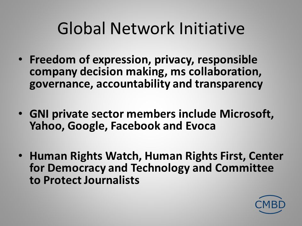Global Network Initiative Freedom of expression, privacy, responsible company decision making, ms collaboration, governance, accountability and transparency GNI private sector members include Microsoft, Yahoo, Google, Facebook and Evoca Human Rights Watch, Human Rights First, Center for Democracy and Technology and Committee to Protect Journalists