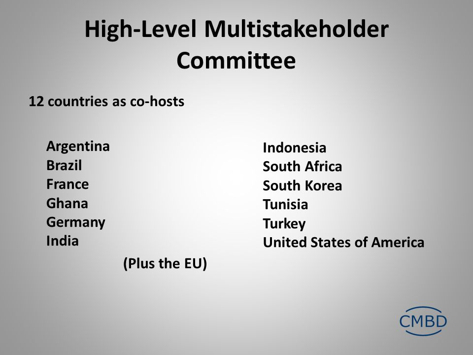 High-Level Multistakeholder Committee 12 countries as co-hosts Argentina Brazil France Ghana Germany India (Plus the EU) Indonesia South Africa South Korea Tunisia Turkey United States of America