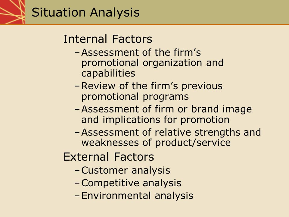 Situation Analysis Internal Factors –Assessment of the firms promotional organization and capabilities –Review of the firms previous promotional progr
