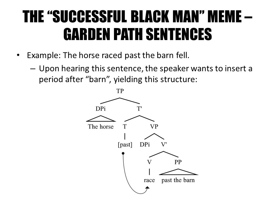 THE SUCCESSFUL BLACK MAN MEME – GARDEN PATH SENTENCES Example: The horse raced past the barn fell. – Upon hearing this sentence, the speaker wants to