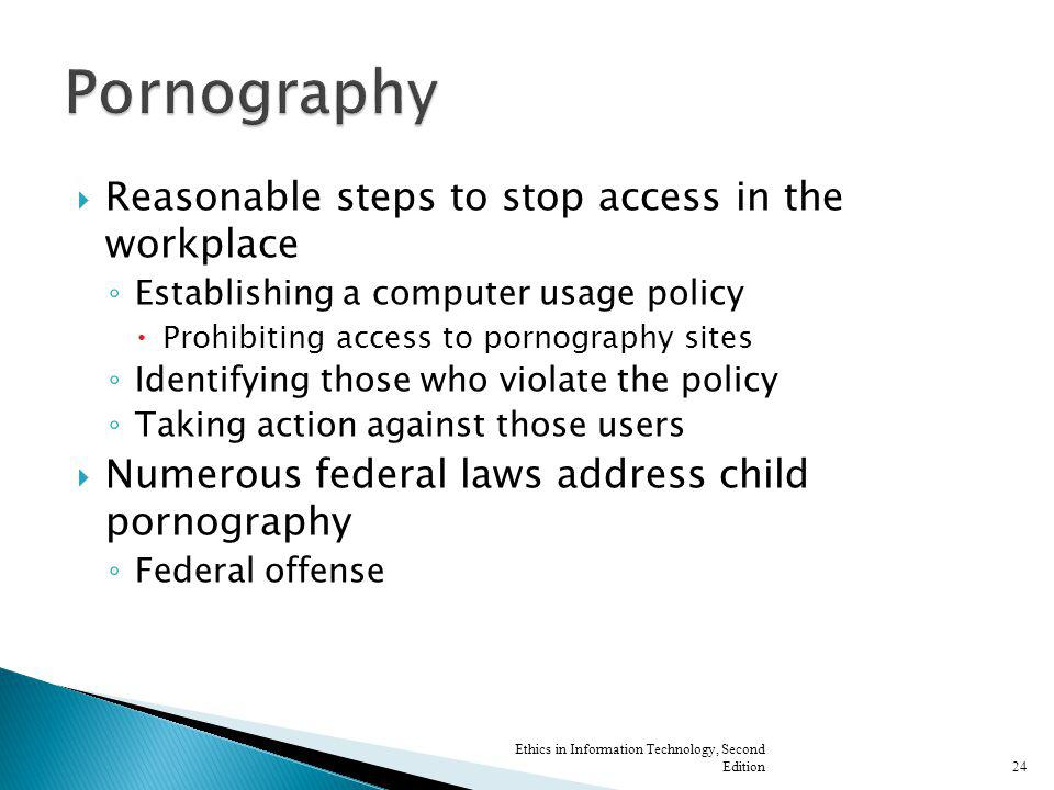 Reasonable steps to stop access in the workplace Establishing a computer usage policy Prohibiting access to pornography sites Identifying those who vi