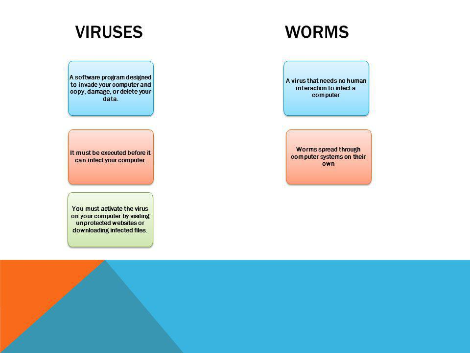 VIRUSES WORMS A software program designed to invade your computer and copy, damage, or delete your data. It must be executed before it can infect your