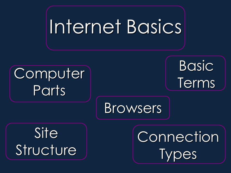 Computer Parts Site Structure Basic Terms Connection Types Browsers Internet Basics Section 1- Internet Basics