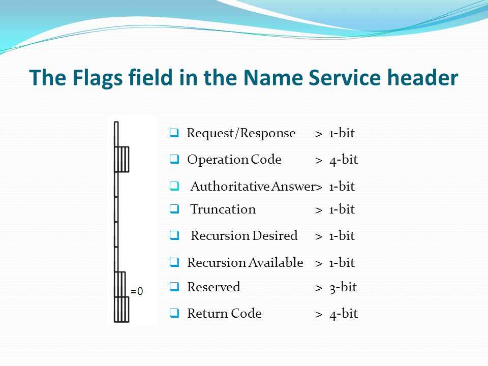 The Flags field in the Name Service header Request/Response> 1-bit Operation Code> 4-bit Authoritative Answer> 1-bit Truncation> 1-bit Recursion Desir