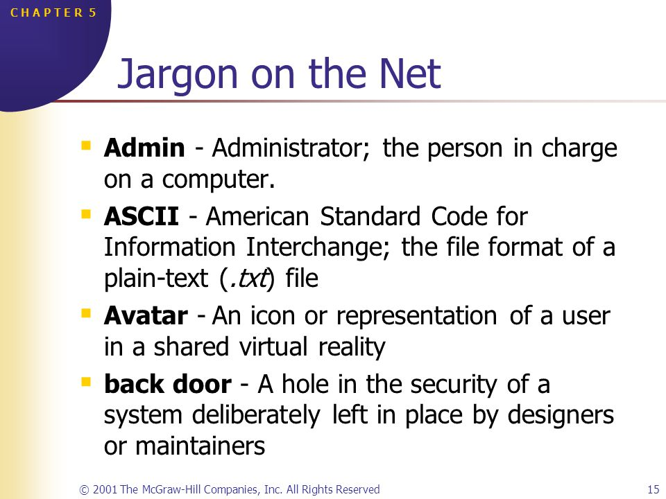 © 2001 The McGraw-Hill Companies, Inc. All Rights Reserved15 C H A P T E R 5 Jargon on the Net Admin -Administrator; the person in charge on a compute