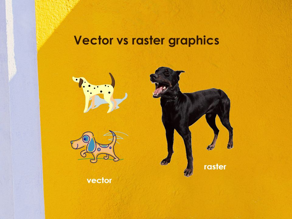 Vector vs raster graphics vector raster