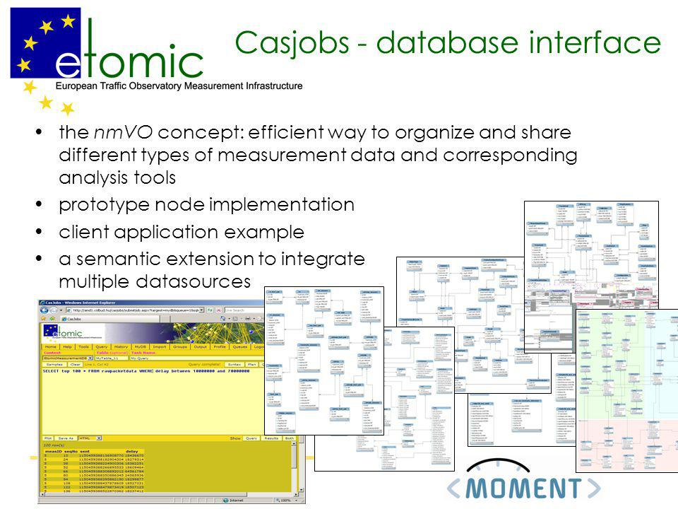 Casjobs - database interface the nmVO concept: efficient way to organize and share different types of measurement data and corresponding analysis tool