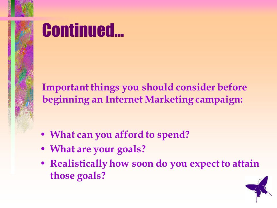 Continued... Important things you should consider before beginning an Internet Marketing campaign: What can you afford to spend? What are your goals?