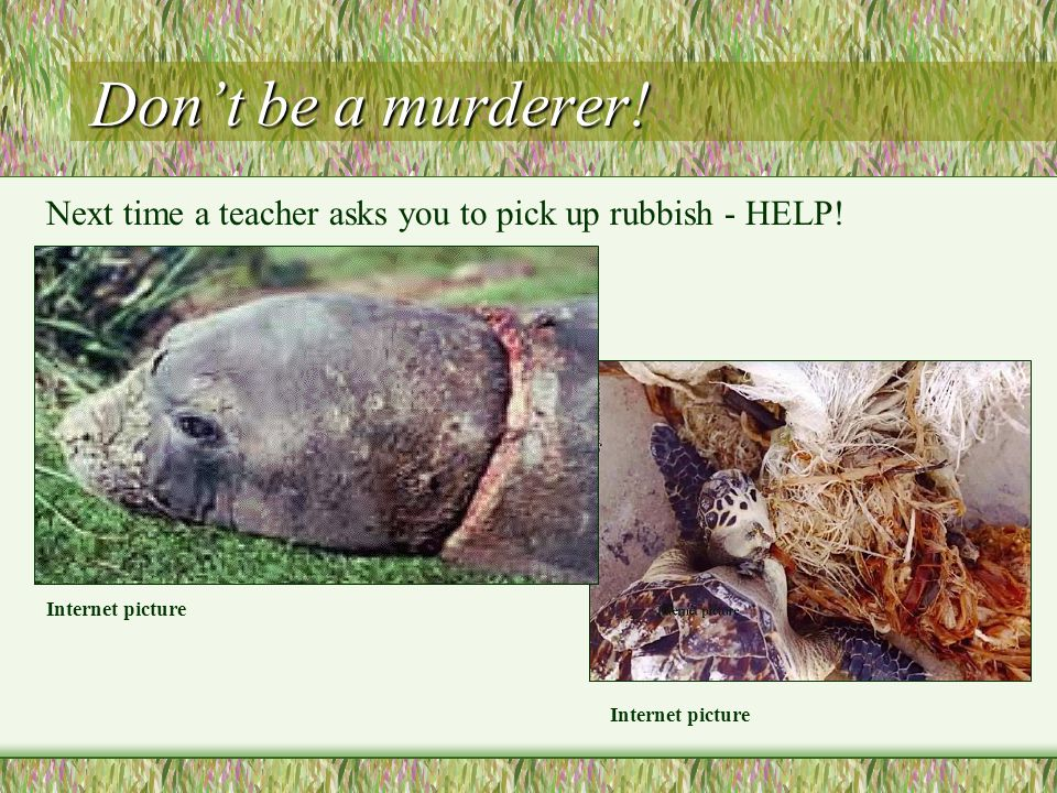Dont be a murderer. Internet picture Next time a teacher asks you to pick up rubbish - HELP.