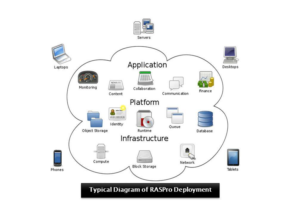 Typical Diagram of RASPro Deployment