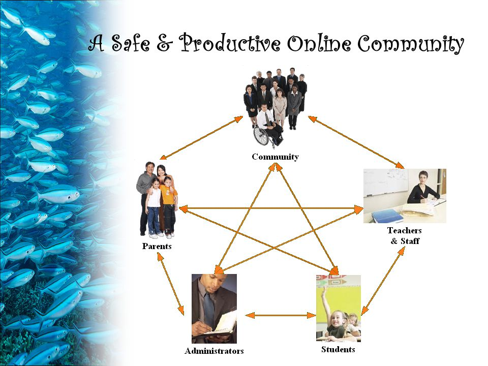 A Safe & Productive Online Community