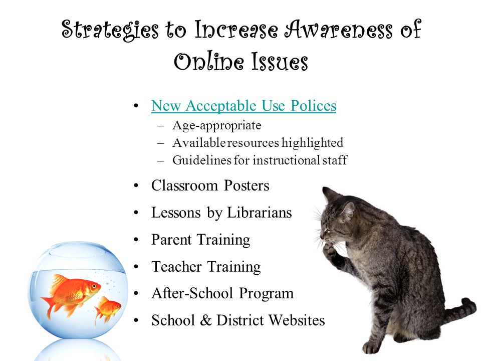 Strategies to Increase Awareness of Online Issues New Acceptable Use Polices –Age-appropriate –Available resources highlighted –Guidelines for instructional staff Classroom Posters Lessons by Librarians Parent Training Teacher Training After-School Program School & District Websites