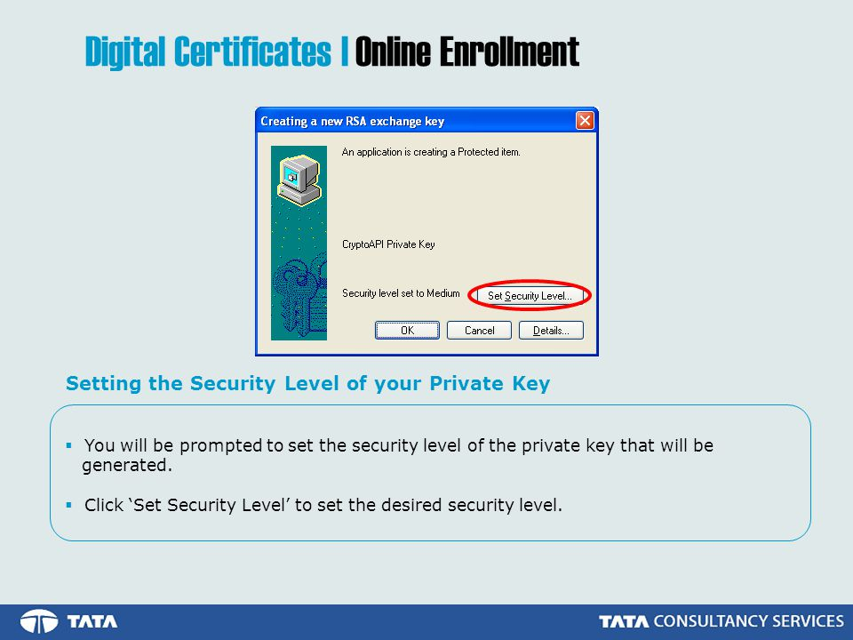 You will be prompted to set the security level of the private key that will be generated.
