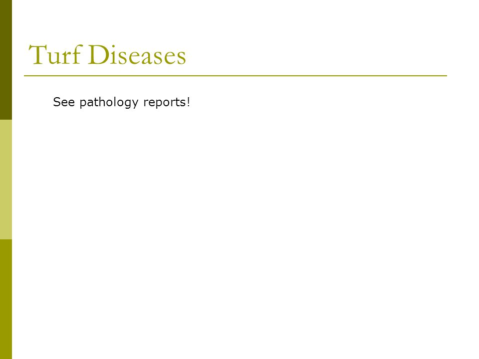 Turf Diseases See pathology reports!