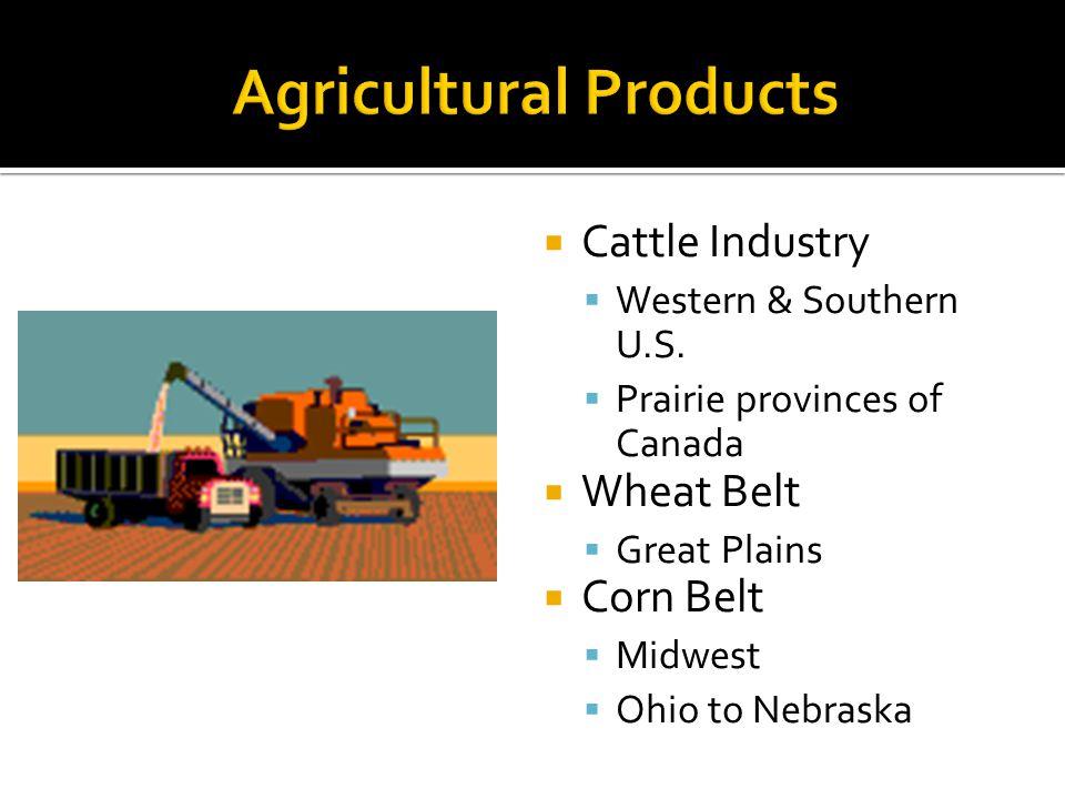 Cattle Industry Western & Southern U.S.